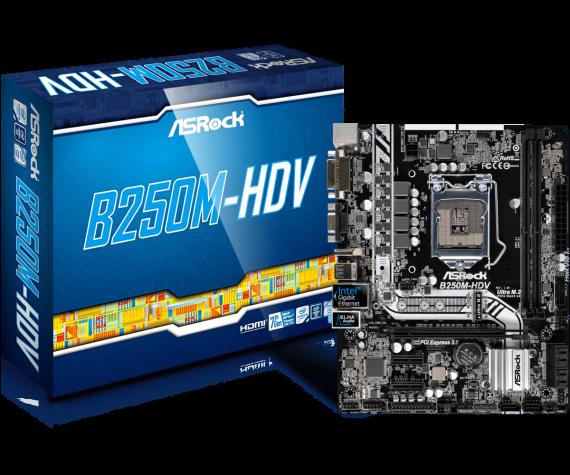 B250M-HDV(L1)